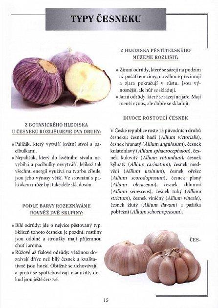 Náhled Česnek - Rady, krása, zdraví, recepty