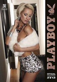 Kalendář nástěnný 2013 - Playboy