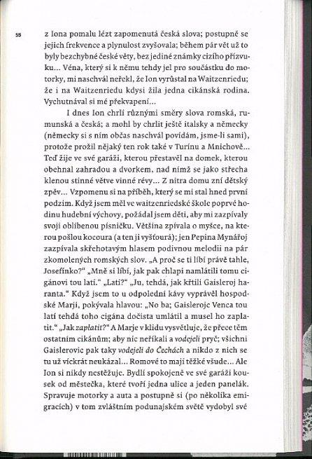 Náhled Pálenka (Prózy z Banátu)