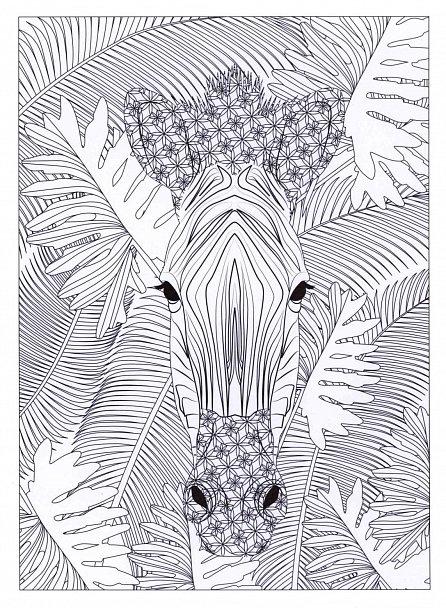 Náhled V hlubinách džungle - Kniha trhacích plakátů