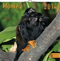 Kalendář 2014 - Opice - nástěnný poznámkový (ANG, NĚM, FRA, ITA, ŠPA, HOL)