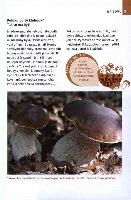 Náhled Jdeme na houby! - Jak je správně určit, sbírat a uvařit