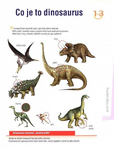 Náhled Pravěké dějiny země - Dětská ilustrovaná encyklopedie