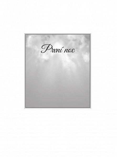 Náhled V náruči světla - Duchovní pouť do nebe