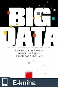 Big Data (E-KNIHA)