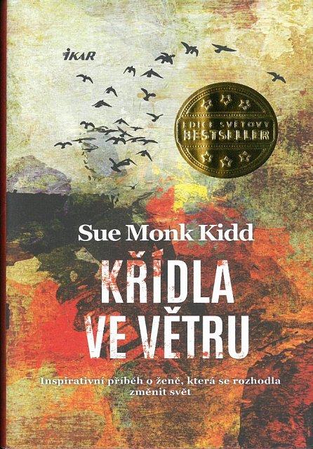 Náhled Křídla ve větru - Inspirativní příběh o ženě, která se rozhodla změnit svět
