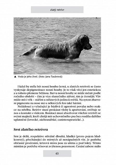 Náhled Retrívři a vodní psi