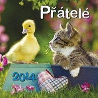 Přátelé - nástěnný kalendář 2014