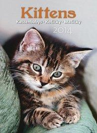 Kalendář 2014 - Kočičky - nástěnný