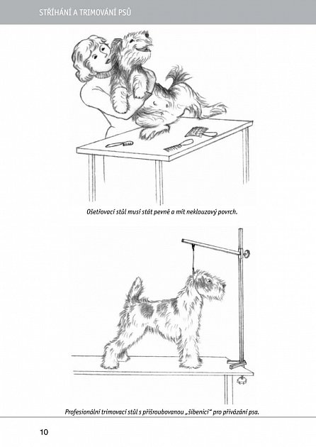 Náhled Stříhání a trimování psů