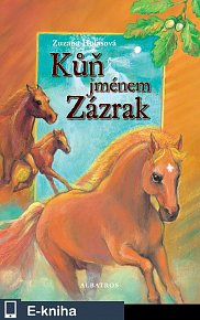 Kůň jménem Zázrak (E-KNIHA)