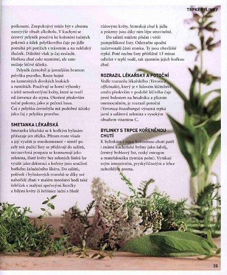Náhled Zahradní a divoké bylinky