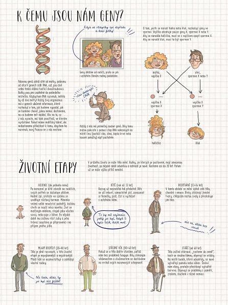 Náhled LIDSKÉ TĚLO. Zábavná anatomie pro děti