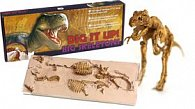 Big Skeleton Tyranosaurus Rex