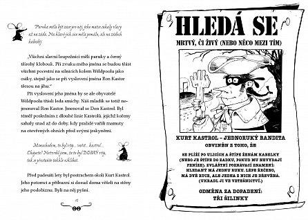 Náhled Švindlova uličnická akademie – Bezva finta