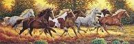 Puzzle Panorama 1000 dílků Koně