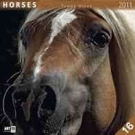 Kalendář 2011 - Koně - Tomáš Míček (30x60) nástěnný poznámkový