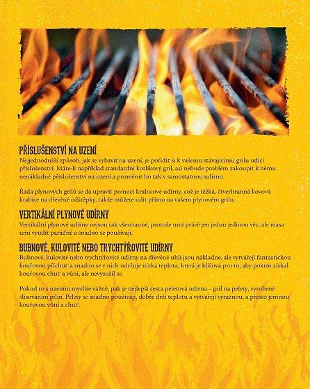 Náhled Nejlepší recepty z barbecue