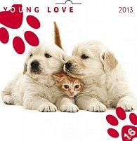 Kalendář 2013 poznámkový - Young Love Koťata & Štěňata, 30 x 60 cm