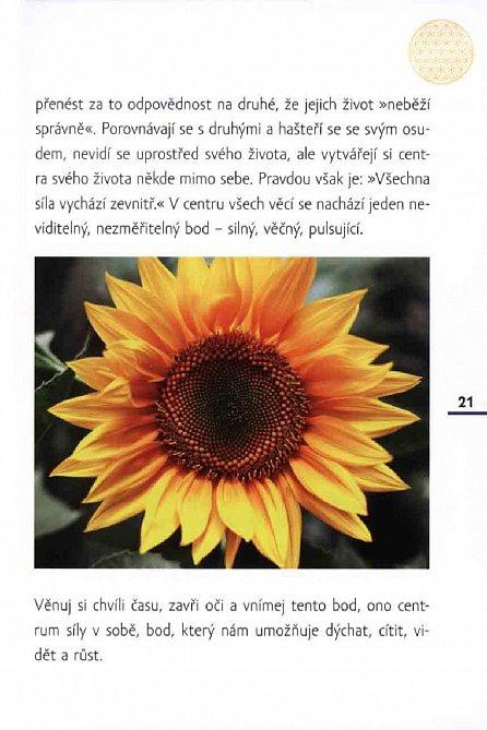 Náhled Květ života - Praktické zkušenosti a nové přístupy