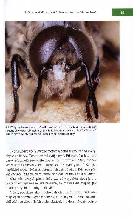 Náhled Fenomenální včely - Biologie včelstva jako superorganizmu