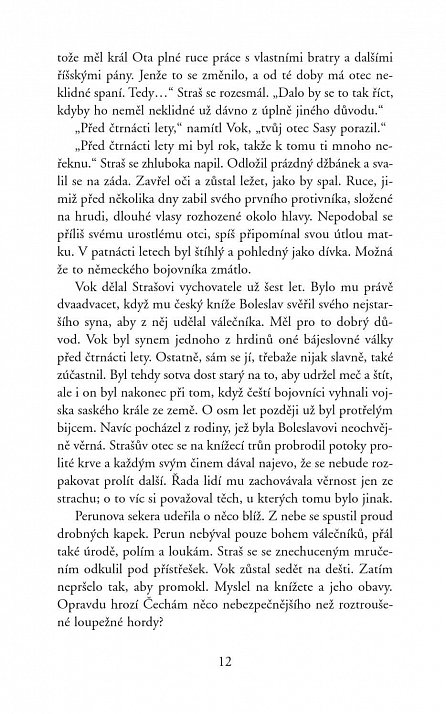 Náhled Boleslav - Příběh bratrovraha
