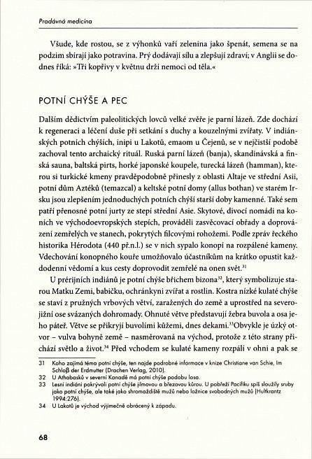 Náhled Pradávná medicína - Kořeny medicíny z dávné minulosti
