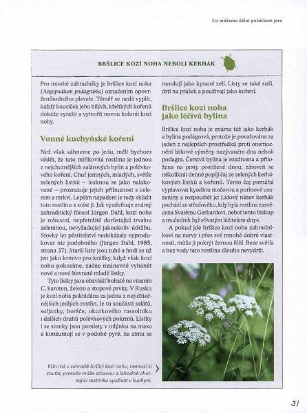 Náhled Zahradníkův rok - Setí, pěstování, sklizeň
