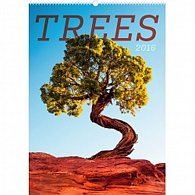 Kalendář nástěnný 2016 - Stromy,  33 x 46 cm
