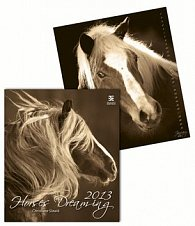 Horses Dreaming - nástěnný kalendář 2013