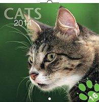 Kalendář 2014 - Kočky - nástěnný poznámkový (ANG, NĚM, FRA, ITA, ŠPA, HOL)