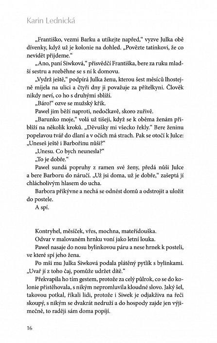 Náhled Šikmý kostel - Románová kronika ztraceného města, léta 1894-1921