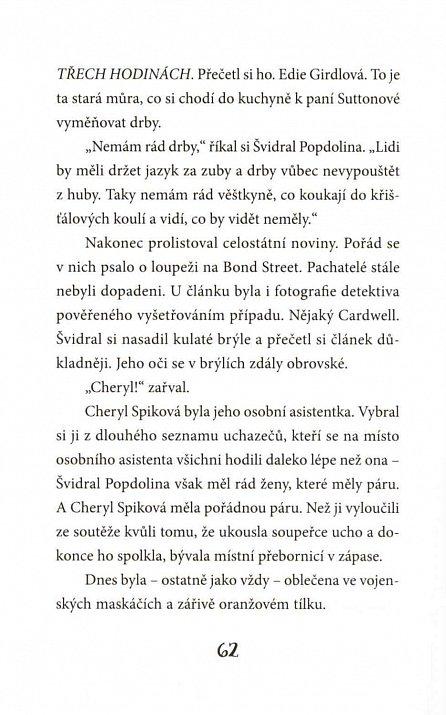 Náhled Křídla & spol. 3 - Zmizení Šimona Šťopky