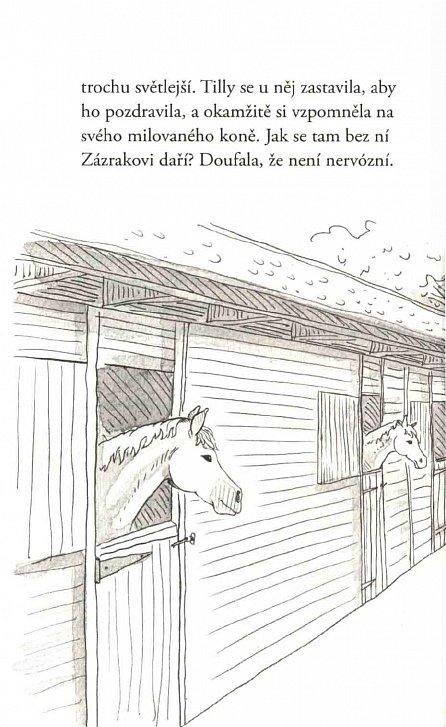 Náhled Neptun-kůň hrdina - Příběhy copaté Tilly 8