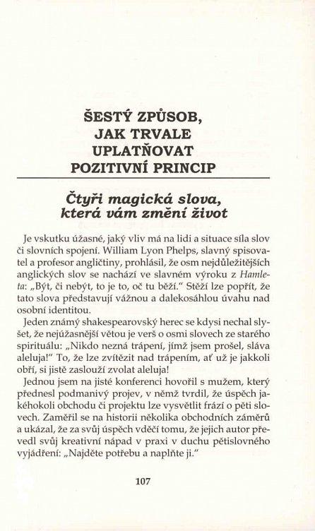 Náhled Pozitivní principy dneška