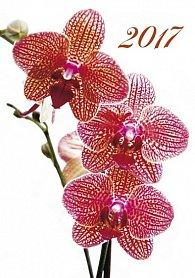 Kalendář nástěnný 2017 - Orchideje