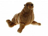 Tuleň plyšový