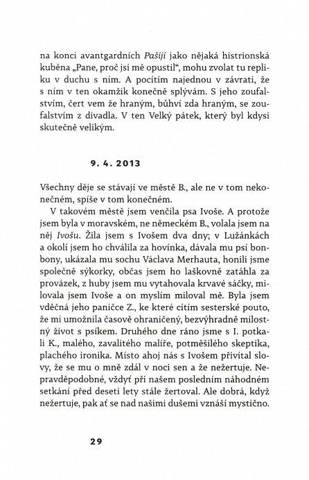Náhled Berlínský zápisník